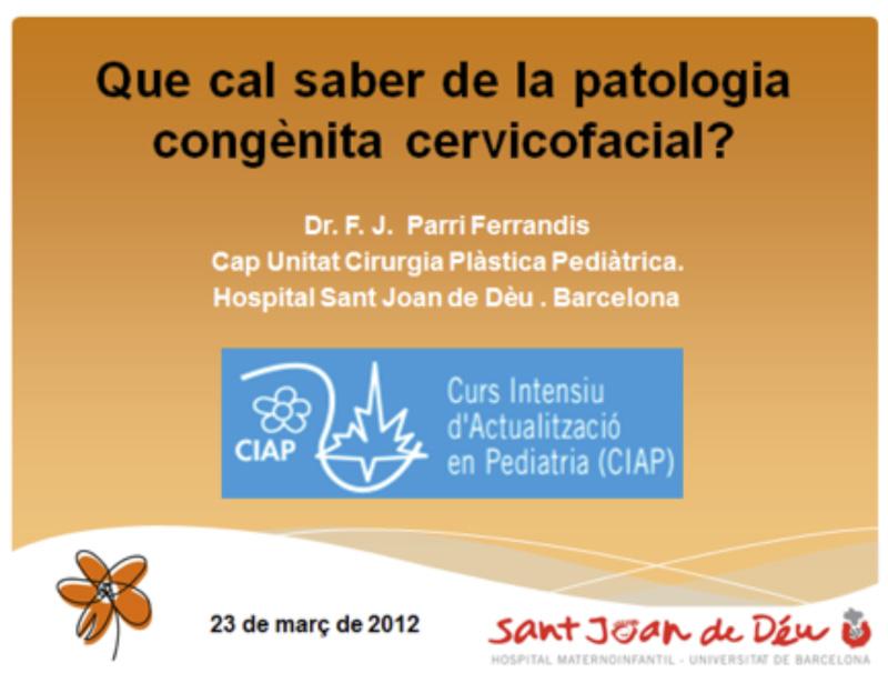 El Doctor Parri ponente en el CIAP 2012